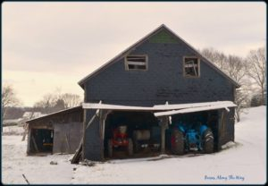 Image of Berruti's Farm