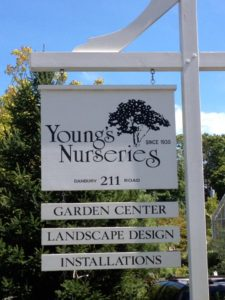 Image of Young's Nurseries